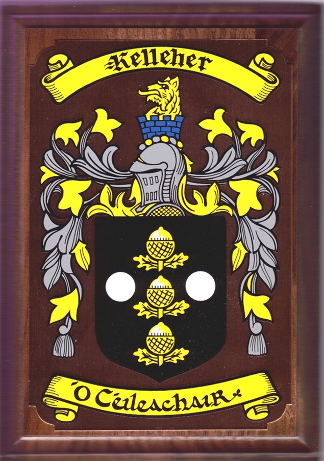 60 Irish Family Surnames From A L Coat Of Arms On A